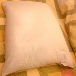 Small Buckwheat Pillow